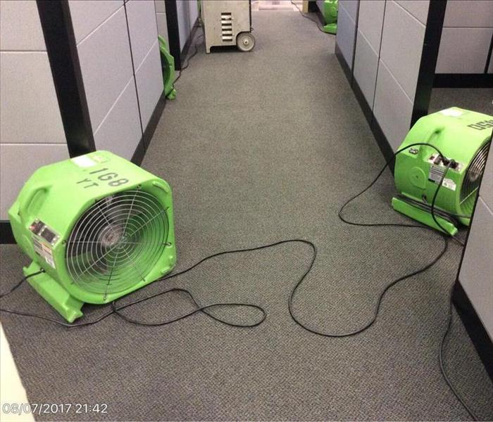 Our air movers placed out of the way so this business can still operate.