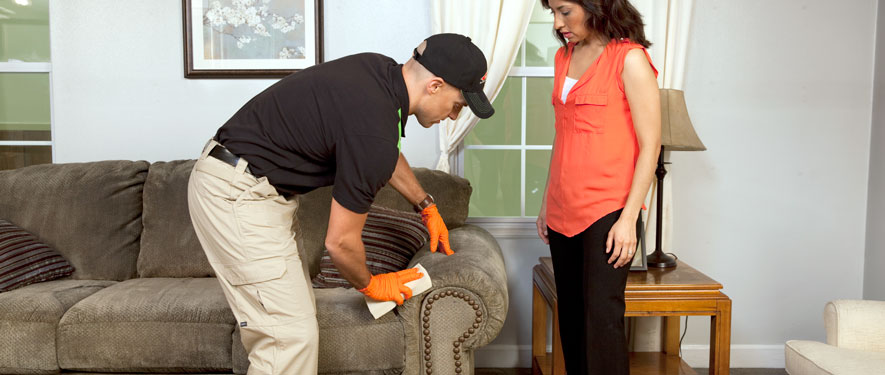 Tillamook, OR carpet upholstery cleaning